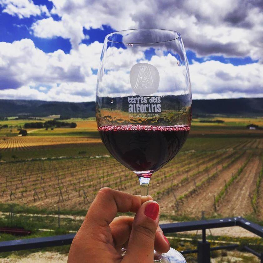 redes sociales y vino wineandtwits